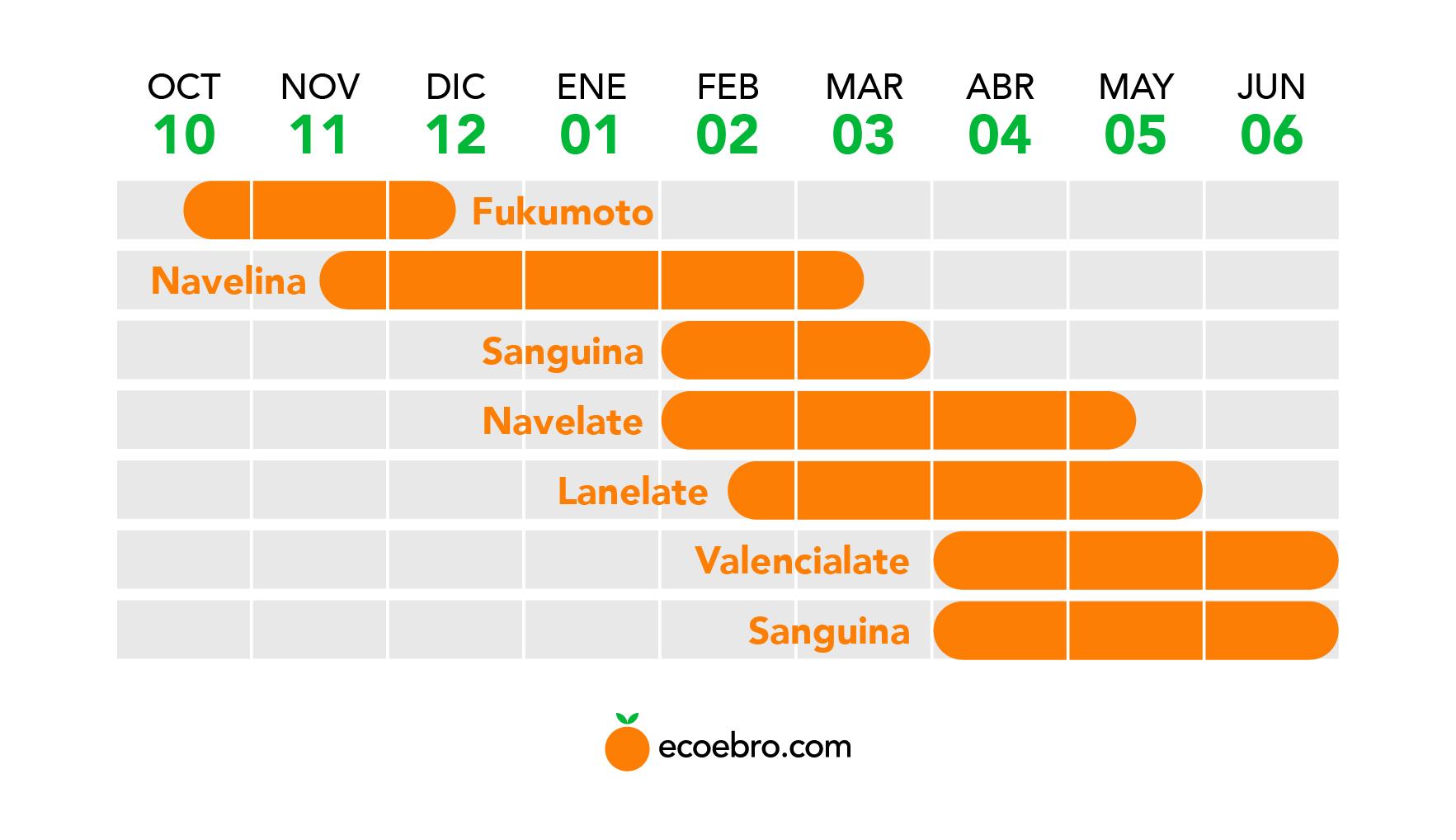 Infografia sobre la producción de naranjas.